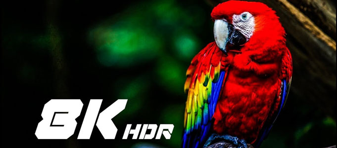ALL YOU NEED TO KNOW ABOUT 8K TV