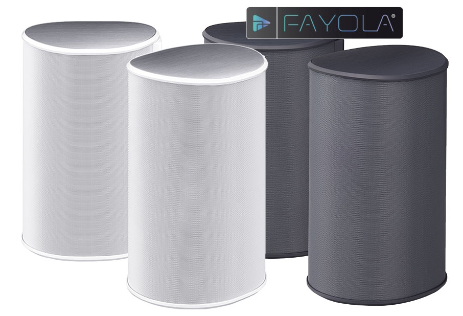 Pioneer FAYOLA Satellite Speakers