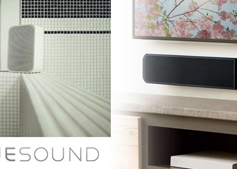 Don't Forget Your Plus One, With Bluesound