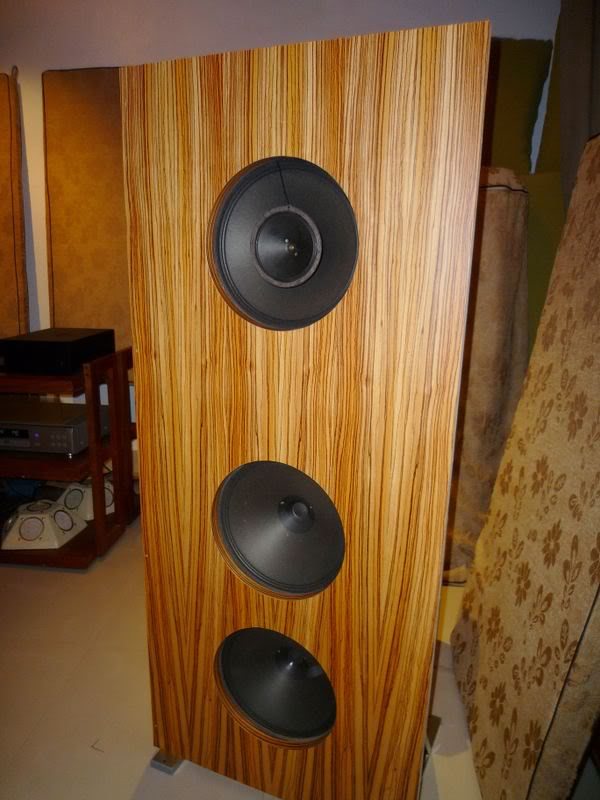 Open Baffle Speaker Pics Diy Audio Projects Stereonet