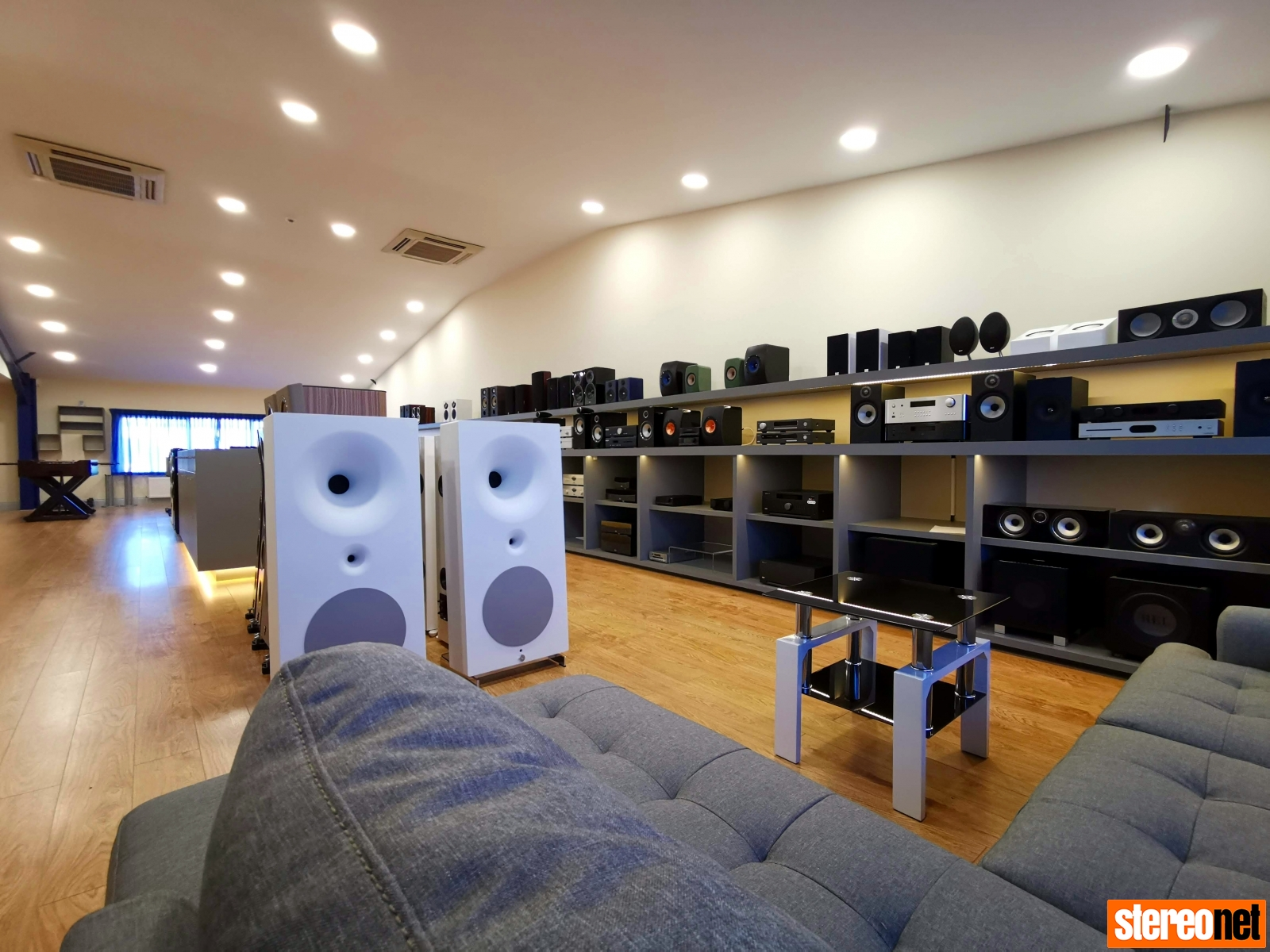 Nintronics Avantgarde Acoustics